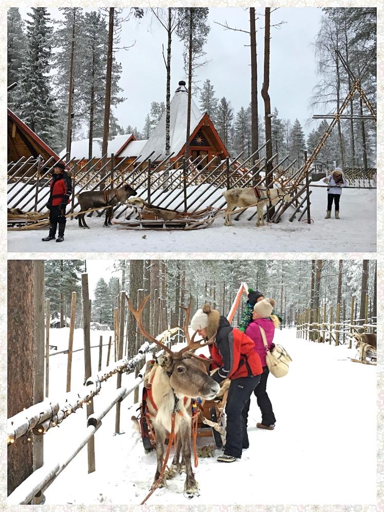 santa-claus-reindeer