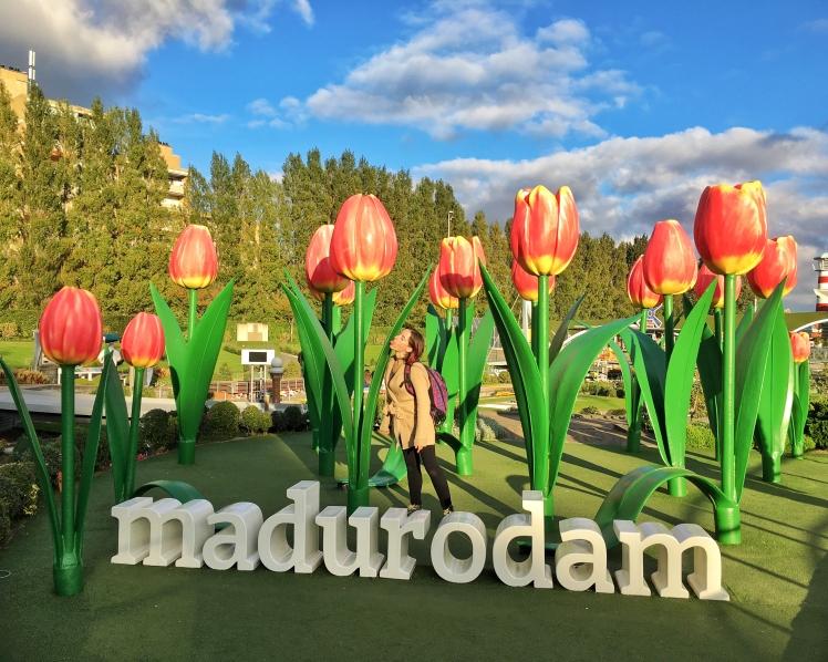 Madurodam Den Haag The Hague Holland Netherlands (12)