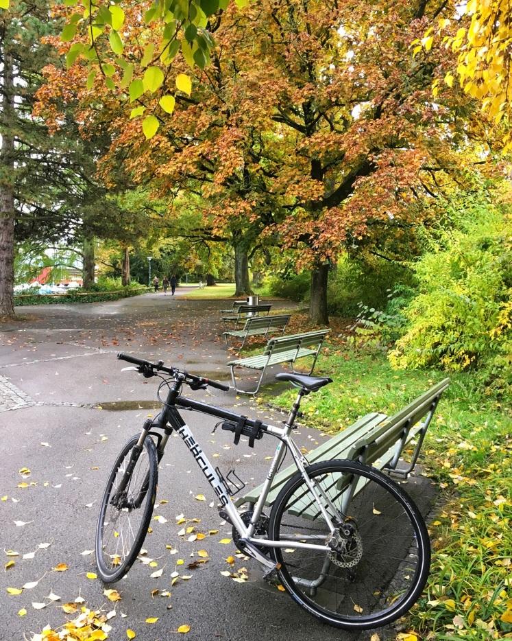 Dani's bike