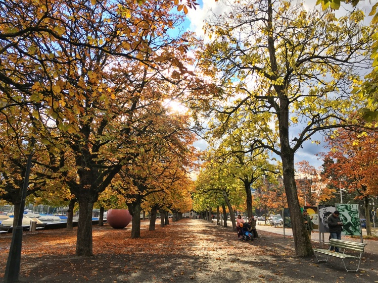Autumn in Zürich